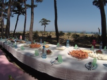 Shared meals by the beach