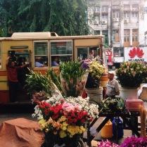 Yangon's sights and sensations
